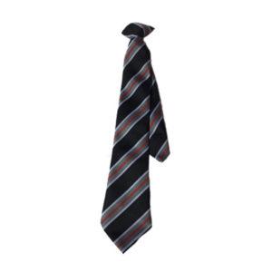 Camborne Clip on Tie 2018