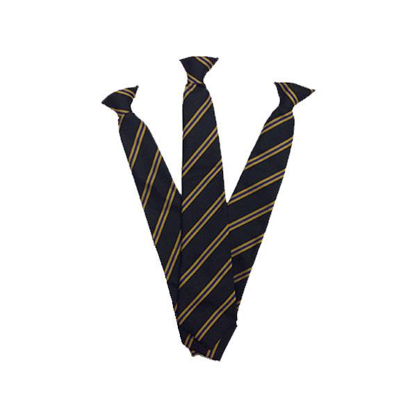 Hayle Academy Clip on Tie