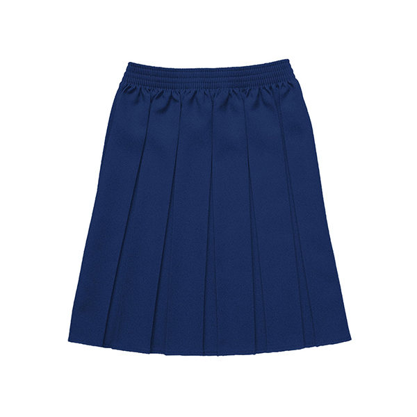 Trewirgie Pleated Skirt