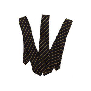 Treleigh Long Tie