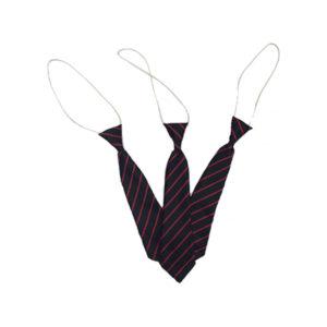Treloweth Elastic Tie